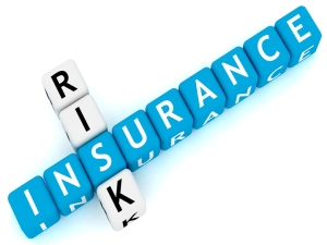 Risk and Insurance Planning Vridhi Money
